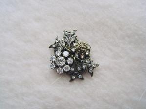 Beads670